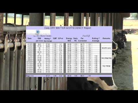Record Keeping for Dairy Farms