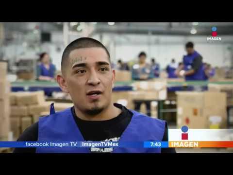 Comenzar de nuevo: deportados mexicanos | Noticias con Francisco Zea