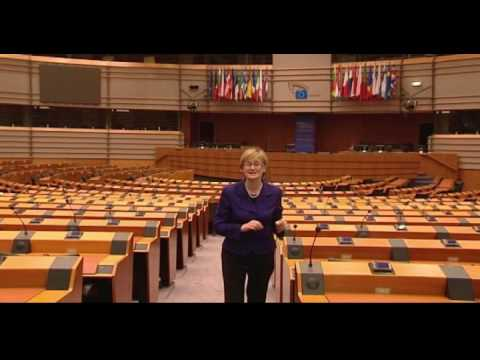 How the European Parliament works