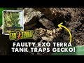 Gecko Gets Trapped in Faulty Exo Terra Terrarium *RANT*