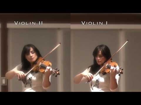 Pachelbel Canon in D Guitar Loop &  Violin Duet (short version)