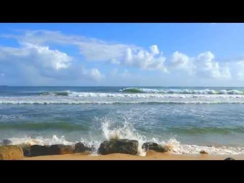 """The Bluff "" Alexandra Headland, Sunshine Coast, Queensland"