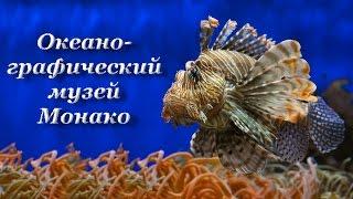 Musée océanographique de Monaco.  Франция. Океанографический музей Монако(Возведенный на склоне легендарной Скалы океанографический музей Монако уже более века охраняет покой..., 2015-10-20T17:17:03.000Z)