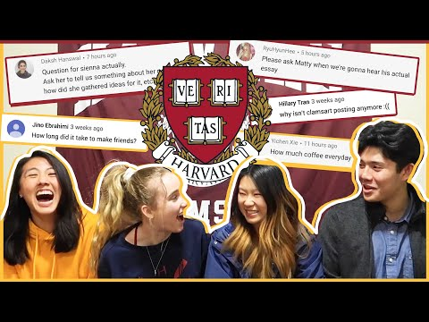 🔥Harvard Students spill the COLLEGE TEA... ft. Sienna Santer, MattyCraps, ClamsArts! | Katie Tracy