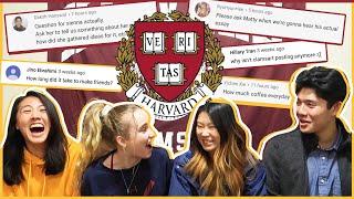 🔥Harvard Students spill the COLLEGE TEA... ft. Sienna Santer, MattyCraps, ClamsArts!   Katie Tracy
