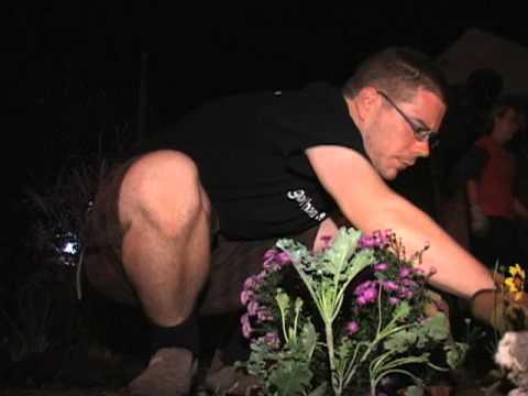 'Guerrilla Gardeners' Tackle Urban Eyesores