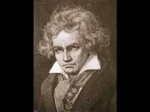 Beethoven's Last Thoughts(last Musical thought).mov