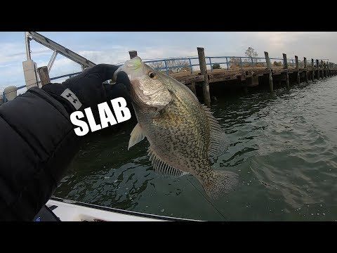 Dock Fishing For Crappie