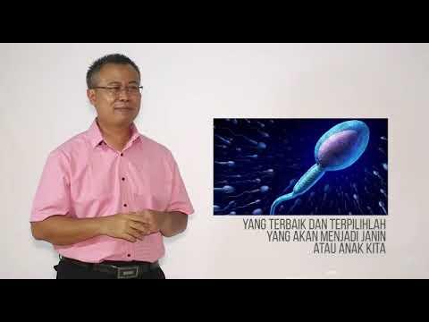Agen Resmi WA 0813 9037 7051, Neoalgae Spirulina Membantu Kesuburan Anda