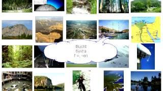 Урок 319 природа