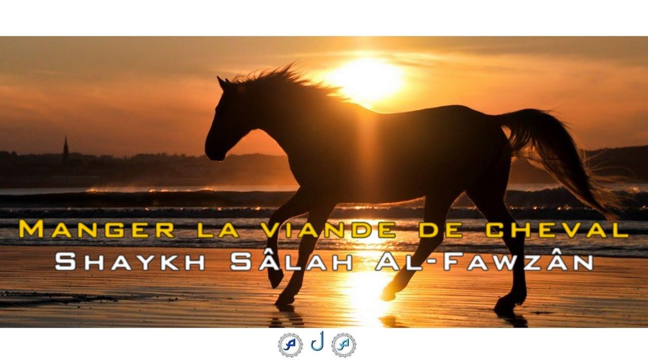 manger la viande de cheval shaykh s lih ibn fawz n al fawz n youtube. Black Bedroom Furniture Sets. Home Design Ideas