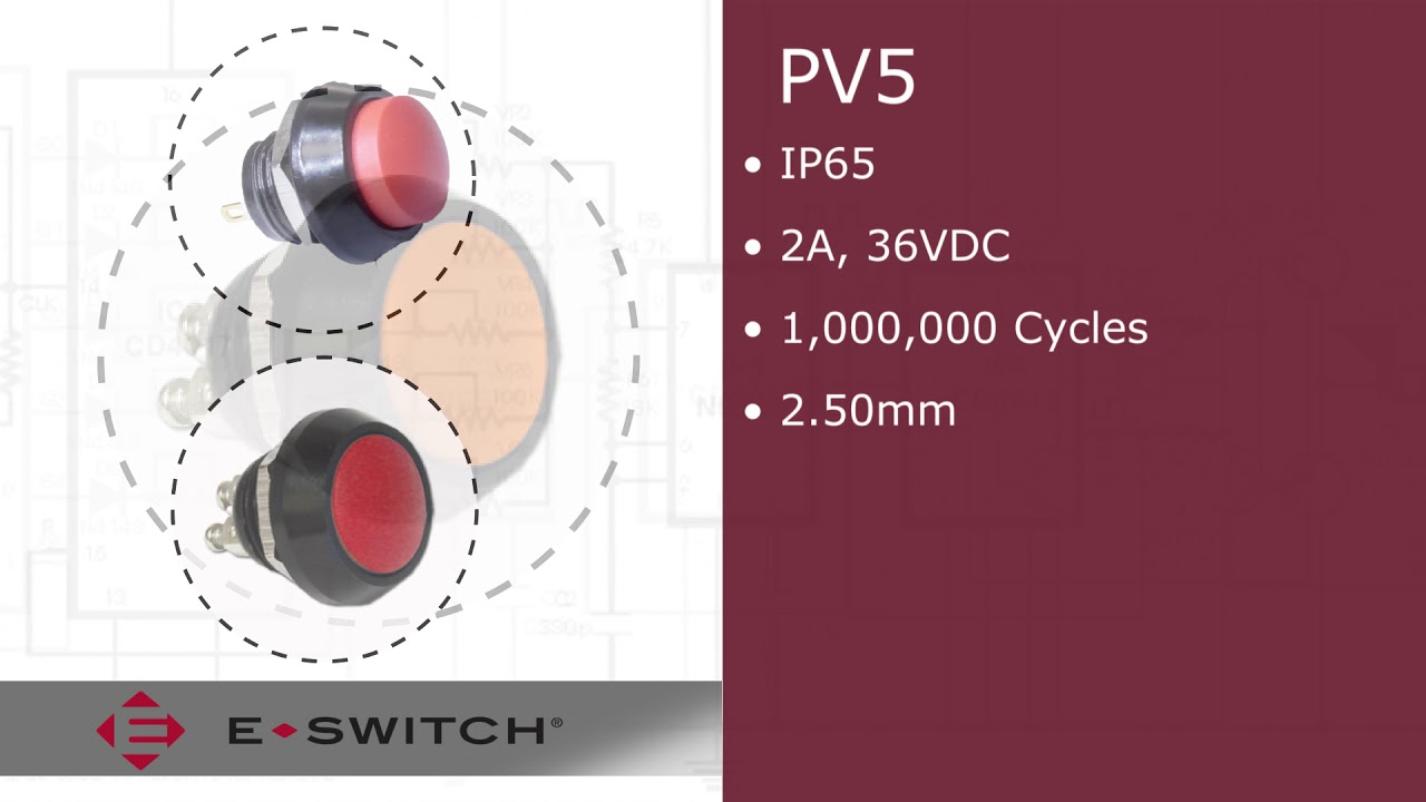Momentary Screw Term E-Switch PV5S64011 Anti-Vandal Pushbutton Switch Off- On