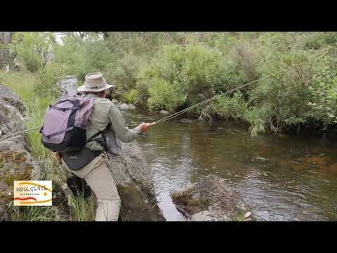 Ever Wanted To See A Professional Fly Fisherman Work A River...