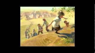 Ansel and The Great Tree DVD Sample
