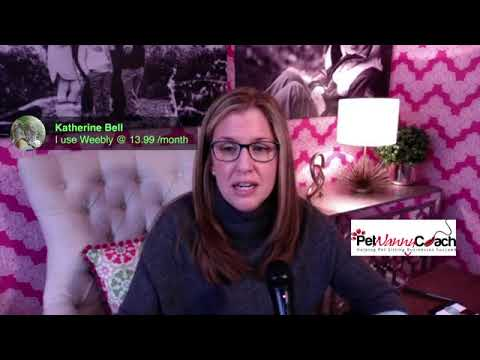 Q&A for Pet Sitters 3-28-18