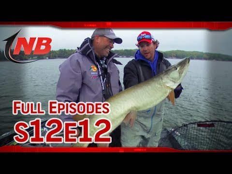 Minnesota Lakes Region Muskies (S12E12)
