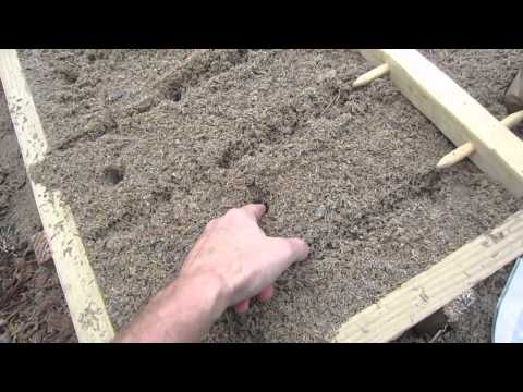 How To Plant Potatoes for High Yields