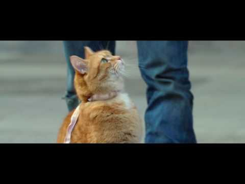 A Street Cat Named Bob - Getting the Punters In Clip - At Cinemas Now
