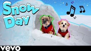 vermillionvocalists.com - SNOW DAY (Official Puppy Music Video)