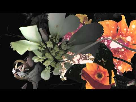 Deadly Avenger - Blossoms & Blood