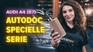 Instalación Filtro de aceite para motor AUDI A4 (8EC, B7): vídeo gratis