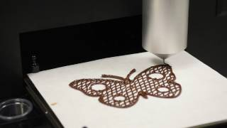 3D Printed Chocolate Butterfly 3D Food Printer Addative Manufacturing