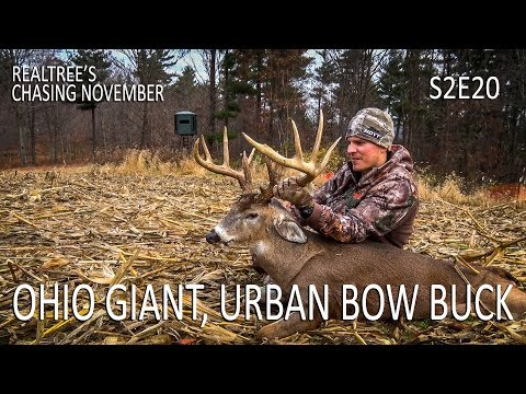 Gnarly Ohio Giant, Urban Zone Bow Buck | Chasing November S2E20