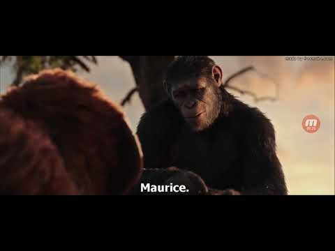 War For The Planet Of The Apes Caesar Death Scene (2017)