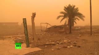 Bad weather, damaged infrastructure hinder movement around Mosul