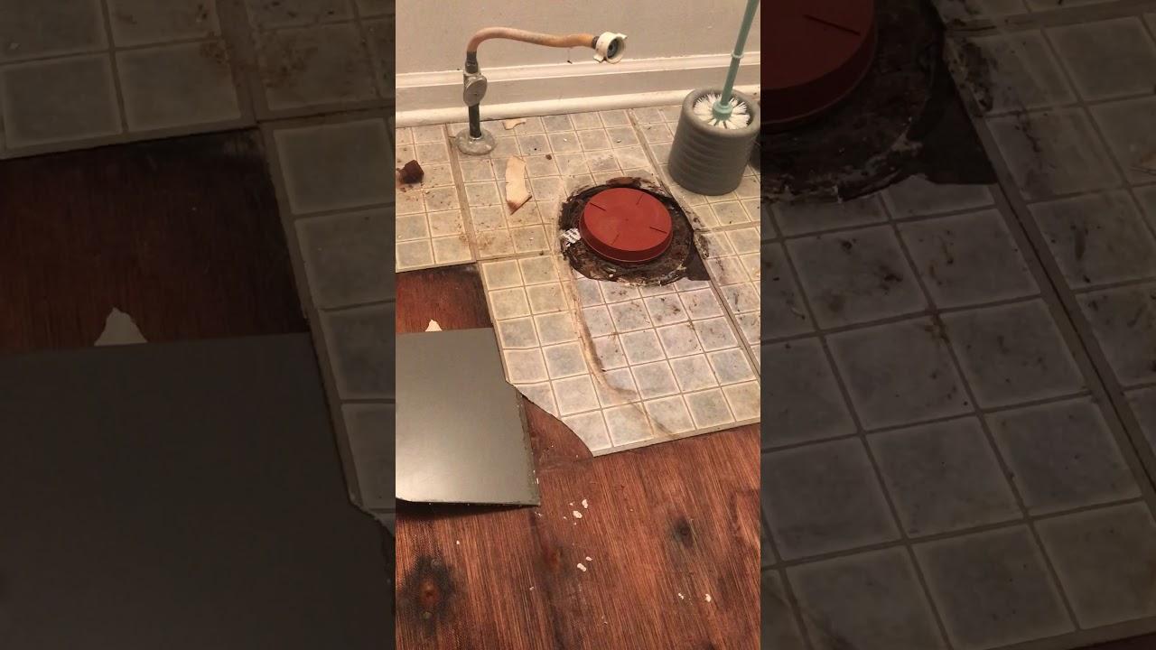 How to remove vinyl tile easily with heat gun youtube how to remove vinyl tile easily with heat gun dailygadgetfo Choice Image