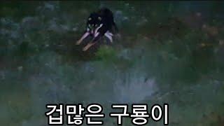 진돗개 네눈박이 #158.구룡이와 예리 두리. 고라니 …