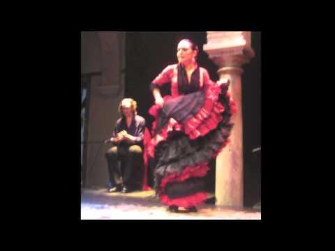 FLAMENCO SHOW - SEVILLA (SOUND RECORDING)