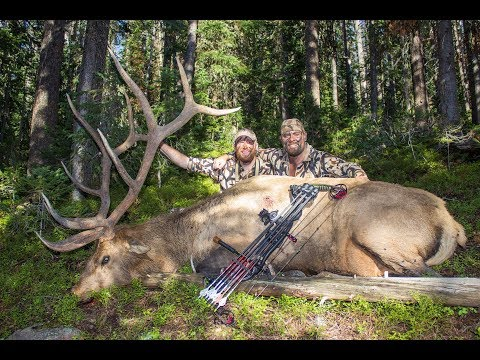 I SHOT A 360 INCH BULL ON A COLORADO BACKCOUNTRY BOWHUNT - DAY 2