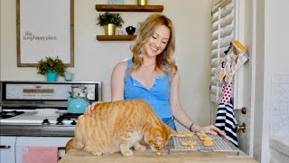 Reluctant Housewife: Homemade Cat or Dog Treats