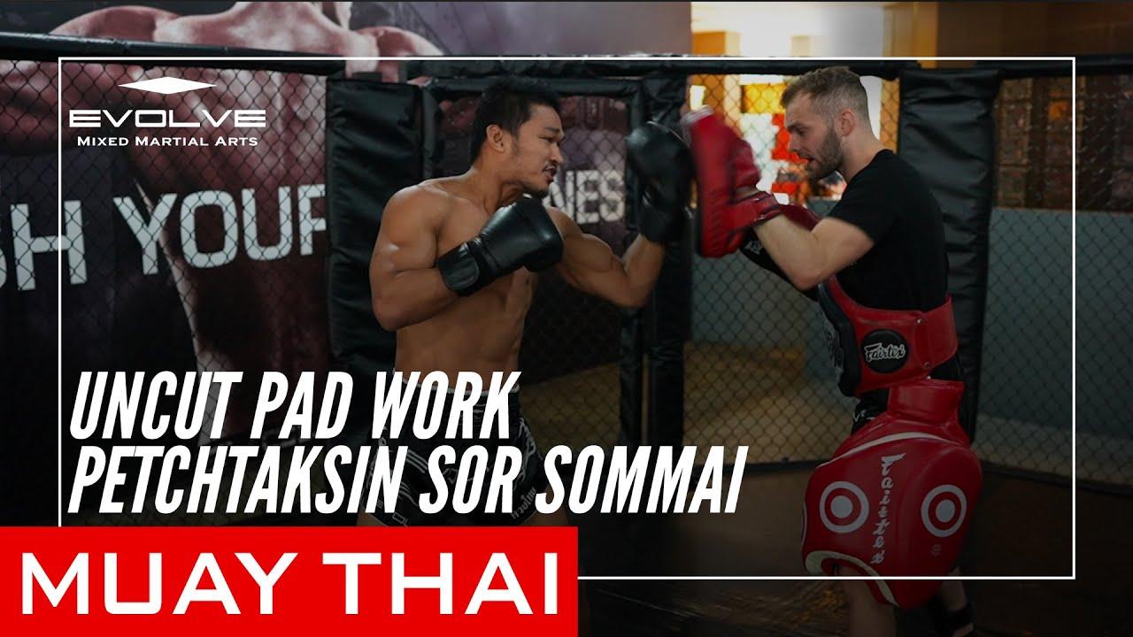 Uncut Muay Thai Pad Work   Petchtaksin Sor Sommai