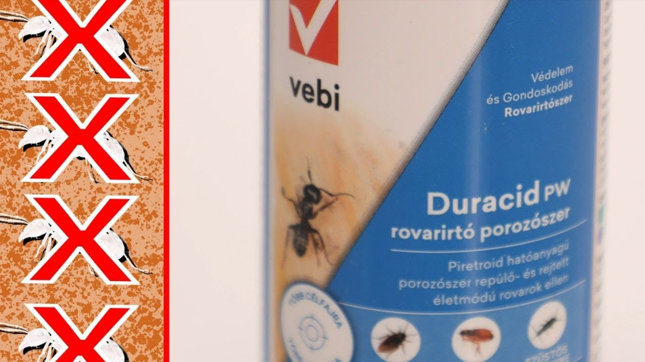 Biztonságos parazitaellenes szerek - Hogyan lehet takarítókkal megtisztítani a parazitákat