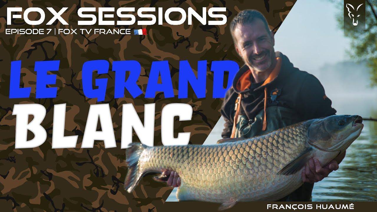 Download LE GRAND BLANC - Avec François Huaumé   Pêche à la Carpe FOX TV
