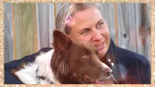 JDT Terri Dossetto - Dog Trainer