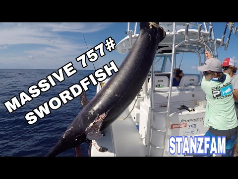 757# Swordfish! Massive Broadbill Swordfish With Capt. Nick Stanczyk!