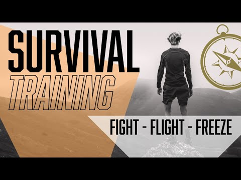 Survival Training: FIGHT - FLIGHT - FREEZE (How would you respond)