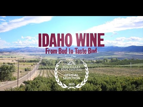 Idaho Wine, From Bud to Taste Bud – OFFICIAL TRAILER