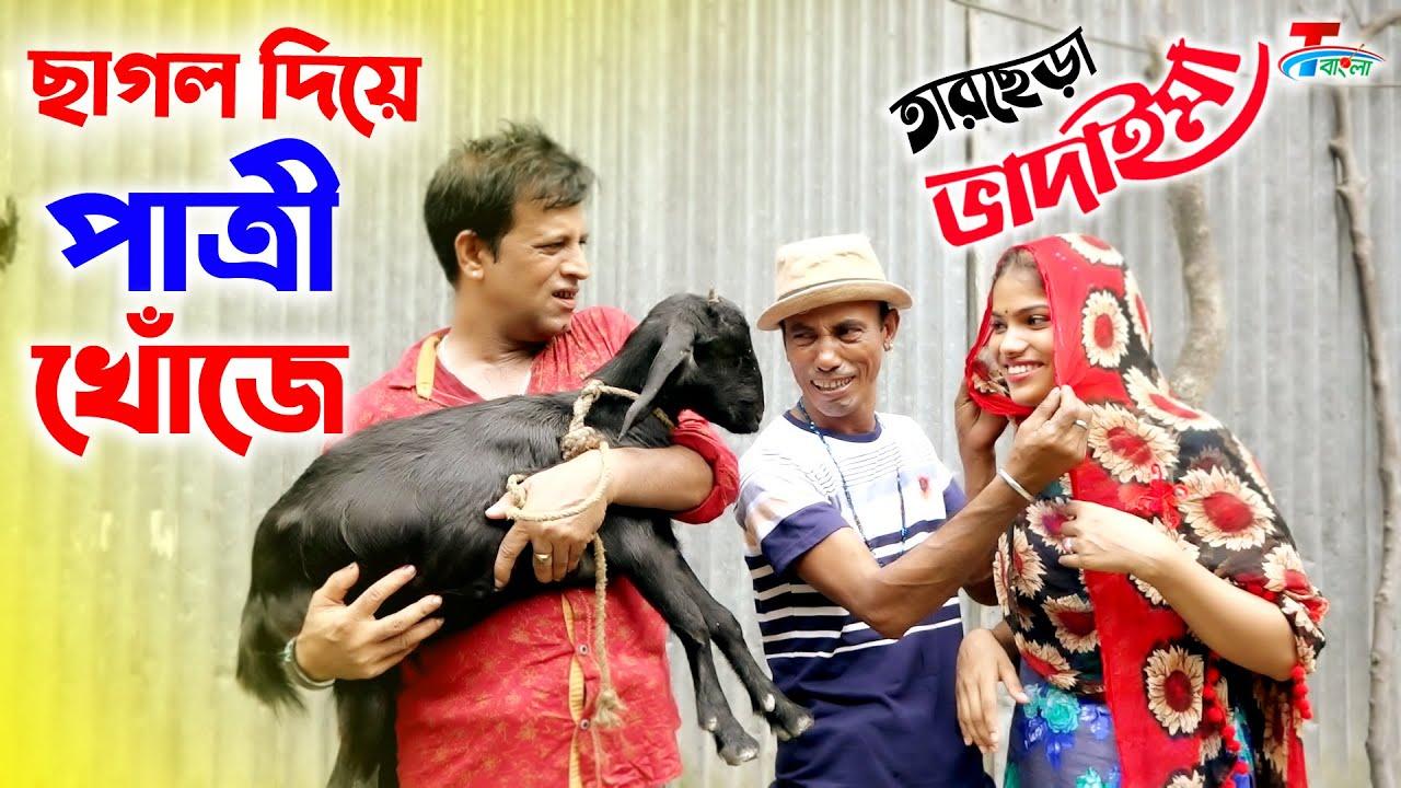 ১০০ % হাসির কৌতুক    ছাগল দিয়ে পাএীর খোঁজে । তারছেড়া ভাদাইমার কৌতুক   New Bangla Koutuk 2020  