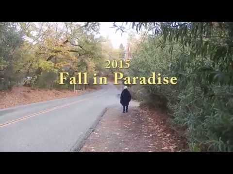 Fall in Paradise CA 2015