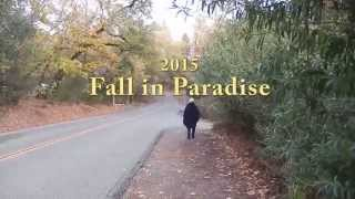 Fall in Paradise CA 2015