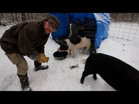 Cleaning up the Homestead After a big Snow Storm ~ Getting Ready for  -40 F Temps