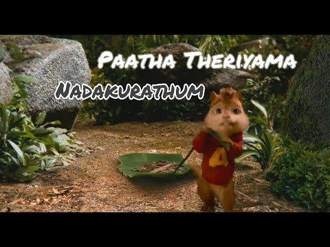 PAATHA THERIYAMA NADAKURATHUM (Chipmunk Version)  - Tamil Watsapp Status