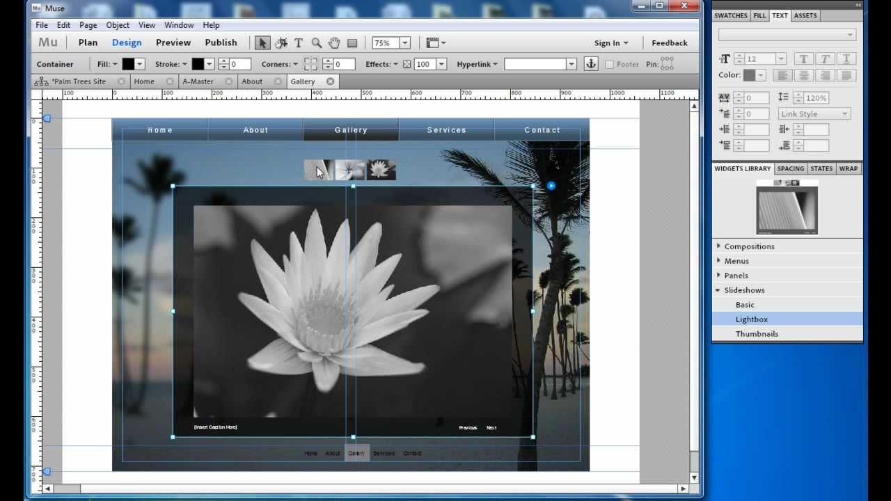 Adobe Muse: Customize Widgets