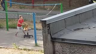 Собака космонавт