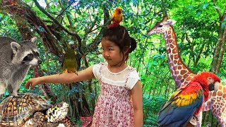 Exciting indoor zoo play, A variety of animals.kids songs nursery rhymes for kids&children