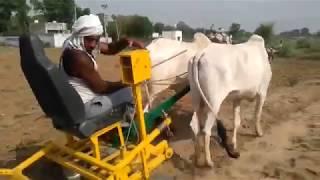 Rotervator on ox  A dekho desi Jugarad Farming  Implements 2018
